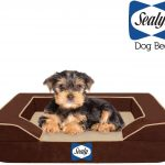 Sealy Lux Pet Bed